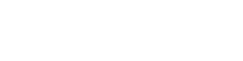 BDC Group Inc. Logo Horizontal White